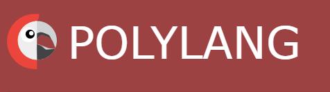 מדיה בכל השפות פלאגין פולילנג polylang